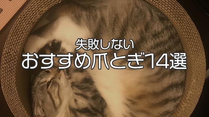 【愛猫家イチオシ】猫用の爪とぎ おすすめ14選|失敗なしで猫が喜ぶ人気の商品が必ず見つかる!【2019年版】