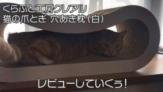 【くらふと工房クレアル 猫の爪とぎ 穴あき枕レビュー】BIGサイズで安定感抜群!大型猫にオススメの爪とぎ【口コミ・感想・評価】