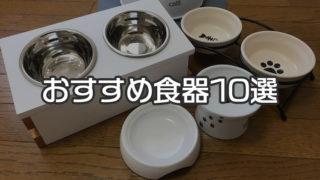 【最新版】猫用の食器・餌入れ おすすめ人気ランキング 10選|食器の高さと安定感を重視して選ぶのがコツ!