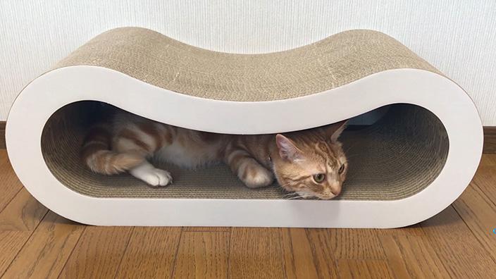 くらふと工房クレアル 猫の爪とぎ 穴あき枕まとめ