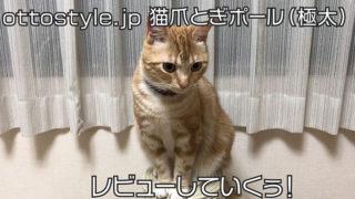 【ottostyle.jp 猫用爪とぎポール(極太)レビュー】極太ポールで安定感抜群!大きな猫におすすめの爪とぎ【口コミ・感想・評価】