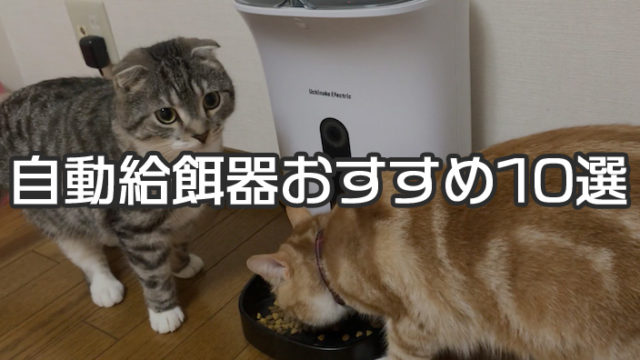 【最新版】自動給餌器おすすめ人気ランキング&選び方 カメラ付きやスマホで遠隔操作できるスマートペットフィーダーがトレンド!【猫用】