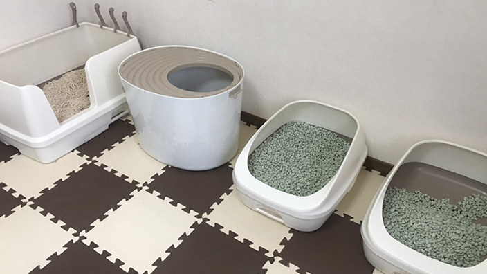 猫トイレの種類