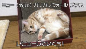 【ミュー (mju:) 爪とぎ ガリガリウォール スクラッチャー プラスレビュー】壁でガリガリしちゃう猫必見!背伸びして思いっきりとぐことができる爪とぎ【動画あり】