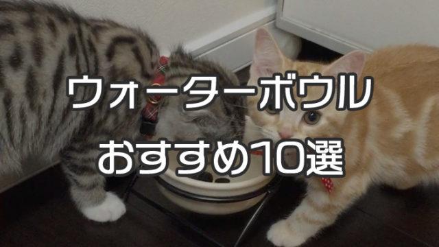 【最新版】猫用の水飲み器(ウォーターボウル) おすすめ人気ランキング 10選