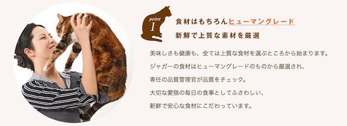 ジャガーキャットフードの原材料・保証成分・安全性は? 愛猫に安心して与えられるの?