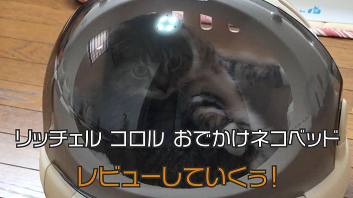 【リッチェル コロル おでかけネコベッド レビュー】丸い形がかわいい猫ベッドにもなるキャリーバッグ【動画あり】