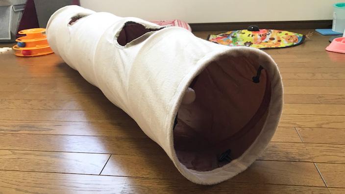 【PAWZ Road キャットトンネル レビュー】猫が夢中で遊んでくれる? 白いボンボンが驚異の吸引力を発揮するただひとつの猫トンネル【動画あり】
