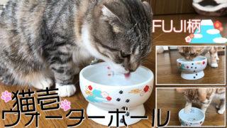 十分な高さと広さで飲みやすいくシンプルなデザインがかわいい猫用水飲み器