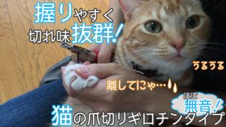 【WeinaBingo 爪切り ギロチンタイプ レビュー】ほぼ無音で使いやすく切れ味抜群の猫の爪切り【動画あり】