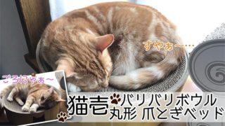 【猫壱_バリバリボウル レビュー】猫のマークがかわいい!爪とぎだけでなくくつろぎスペースとしても使える猫の爪とぎ【動画あり】