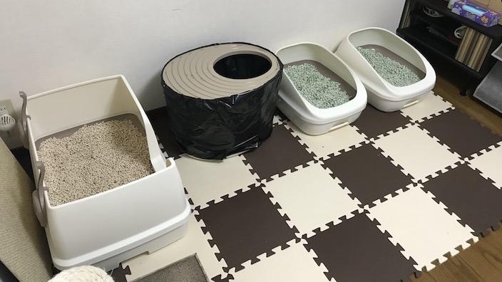 猫のトイレの臭い対策5選