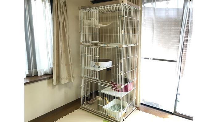 おすすめ猫用ケージ_猫用ケージおすすめ10選