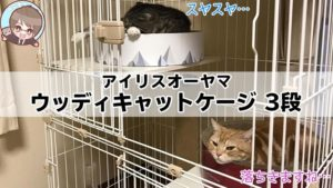 【アイリスオーヤマ ウッディキャットケージ 3段 レビュー】広々とくつろげる鉄板の猫用ケージ【動画あり】