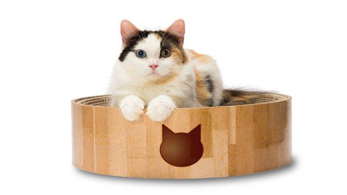 猫壱_バリバリボウルの製品情報