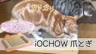 【iOCHOW つめとぎ レビュー】猫耳の形がかわいいベッドにもなる猫の爪とぎ【動画あり】