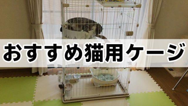 【愛猫家イチオシ】猫用ケージおすすめ10選|猫用ケージの必要性や選び方を詳しく解説!