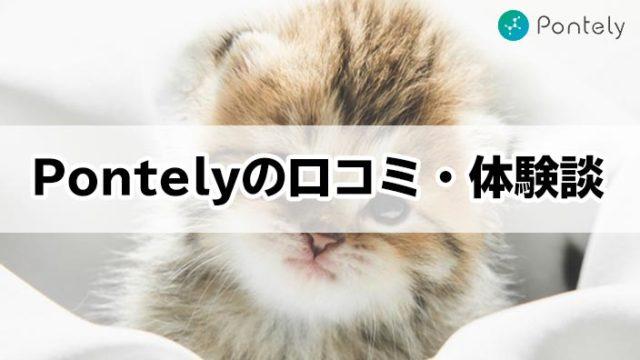 【Pontelyの口コミ・体験談】猫の遺伝子検査で将来の病気がわかる?他社との比較や実体験をご紹介