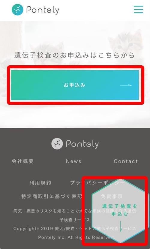 Pontely申し込み方法_申し込み画面の解説2