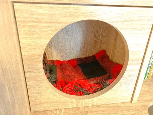LOWYA(ロウヤ)キャットウォーク付き壁面本棚の口コミレビュー_本棚で遊ぶ猫たちの写真13