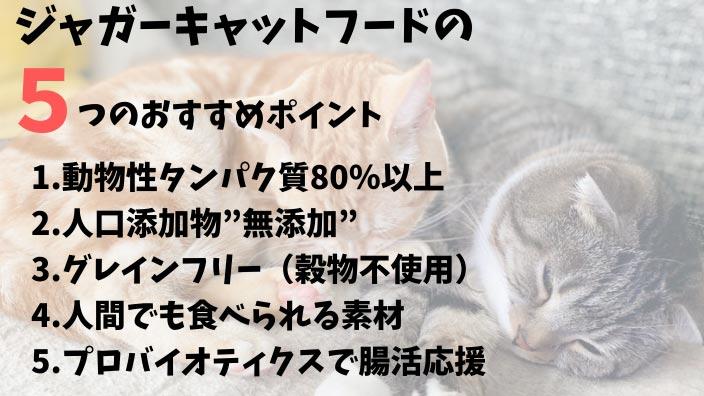 ジャガーキャットフードの-5つのおすすめポイント